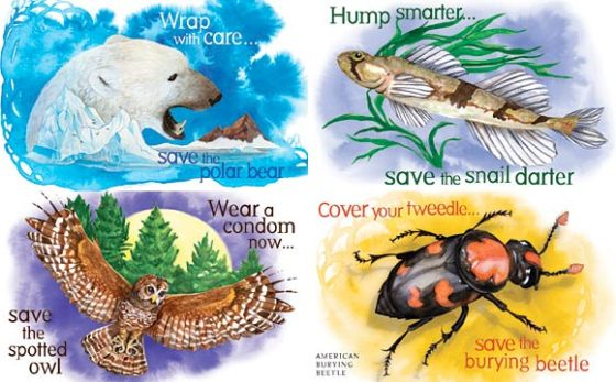 Artwork promoting the use of condoms to save endangered animals - sponsored by the Center for Biological Diversity in Tucson, Arizona.